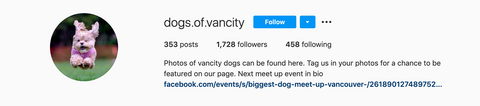 Vancouver instagram dog feature account called Dogs of Vancity