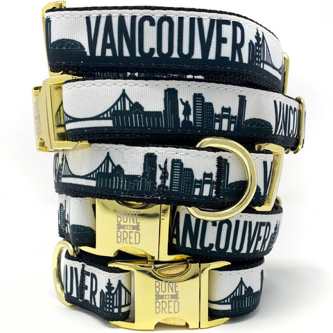 Vancouver Dog Collar - Black + Gold