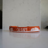 Metal chain Calgary martingale dog collar in orange