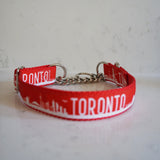 The Toronto red martingale dog collar with a chain
