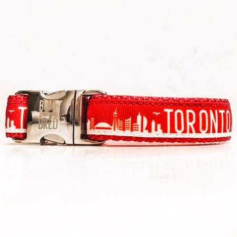 Toronto dog collars with silver metal buckle in red and white