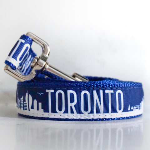 Toronto dog leash in blue and white with silver hardware