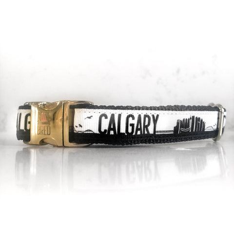 Calgary Collar - Black + Gold