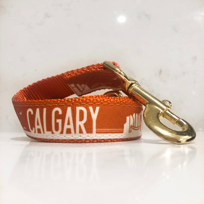The Orange Calgary flame dog leash is lit