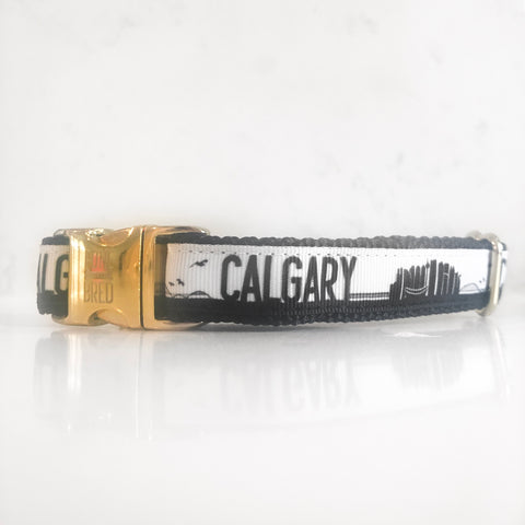 The Calgary collar in black and white by Canadian dog accessories designer Bone and Bred