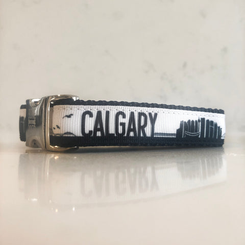 All YYC dogs deserve the best quality dog collars including our Black and White Calgary dog collar