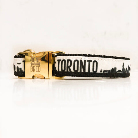 Toronto dog collar with gold metal buckle in black and white