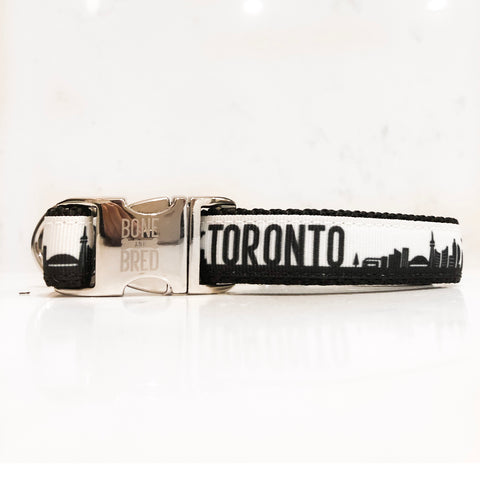 Toronto dog collars with metal buckle in black and white