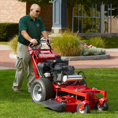 Ferris Walk Behind Mowers