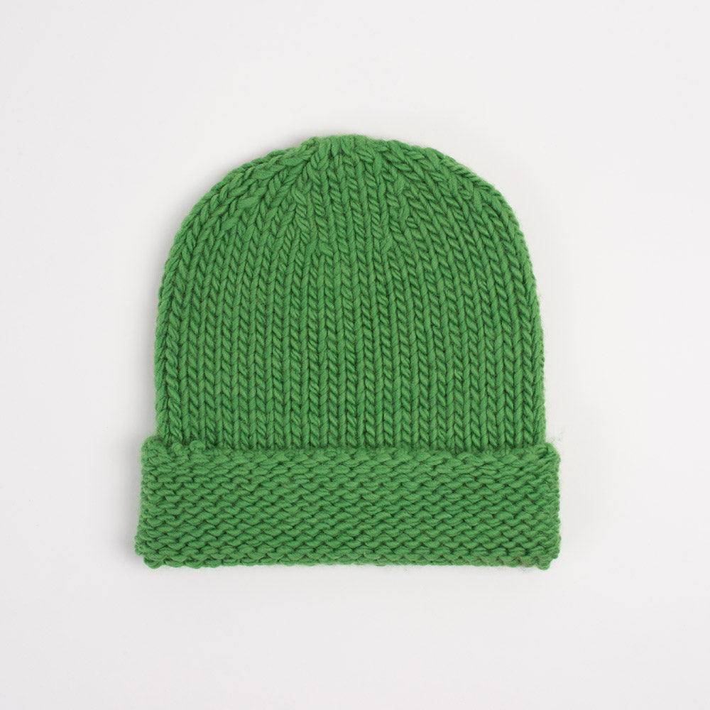 Division Beanie in Lawn