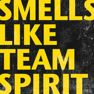 Team Stereo - Smells Like Team Spirit (2011)