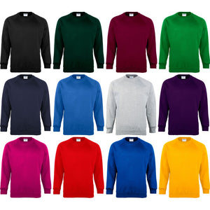 Mens Maddins Coloursure™ Colour Warm Sweatshirt Sweater Top (Sizes Small to 4XL)