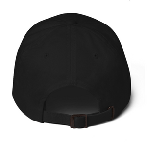 D.S.M.P. CORPORATE LOGO HAT