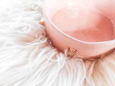 BLUSH PYRAMID PET BOWL