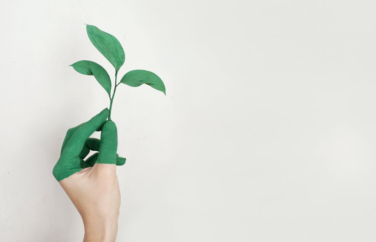 greenwashing; the truth about green business'
