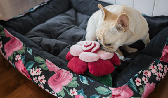 Ultra-Soft-cozy-bed-dark-floral-for-dogs-english