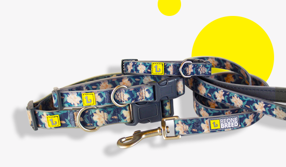 autumn-flowers-collection-silicone-leads-for-dogs-english