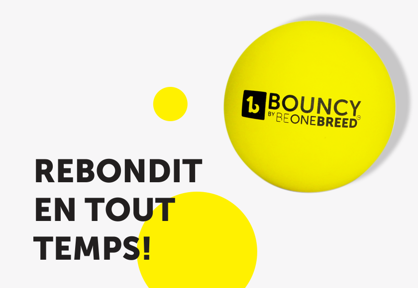 bouncy-ball-toy-for-dogs-french