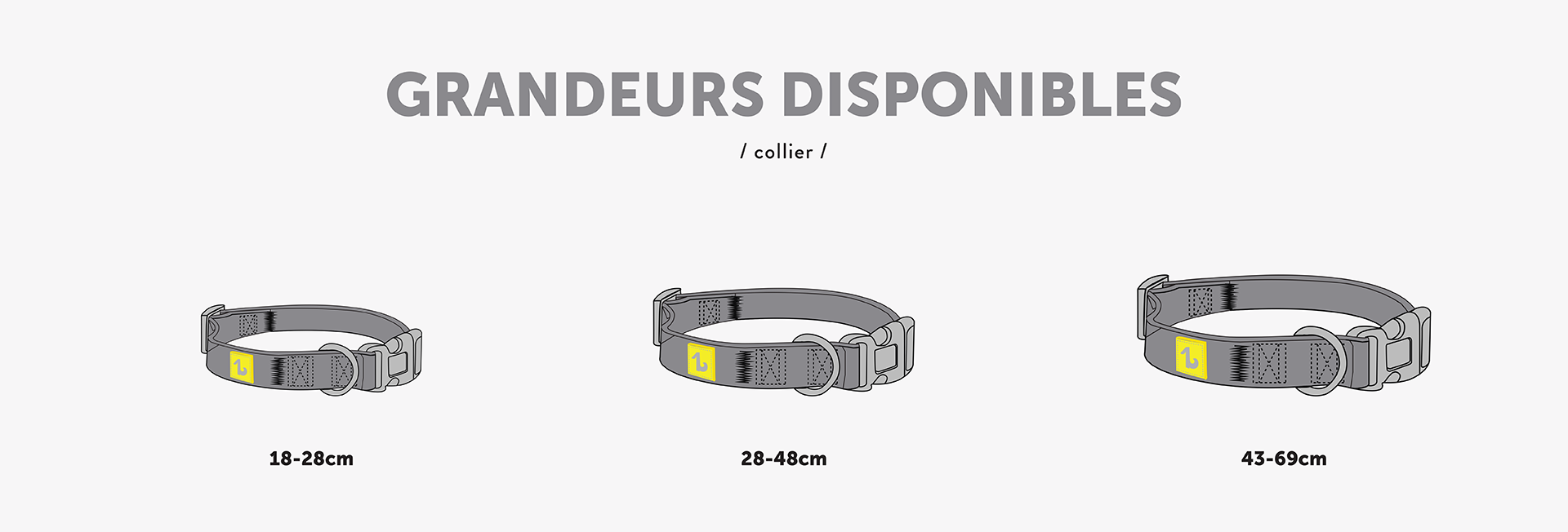 dimensions-collar-for-dogs-french