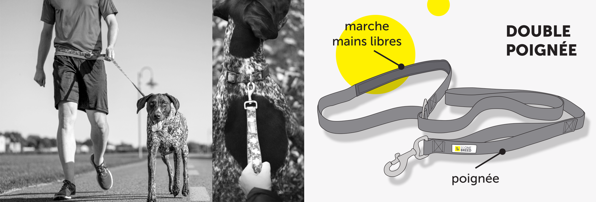 double-handle-lead-for-dogs-french