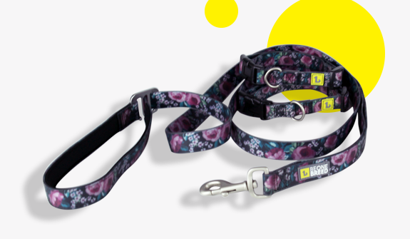 double-handle-silicone-lead-dark-floral-for-dogs-english