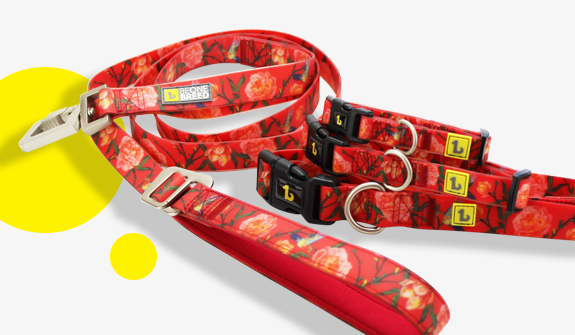double-handle-silicone-lead-red-garden-for-dogs-english
