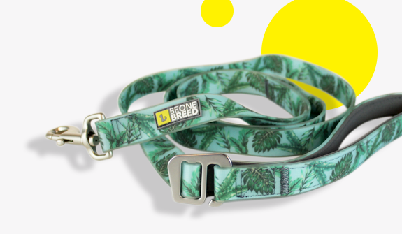 double-handle-silicone-lead-tropical-palms-for-dogs-english