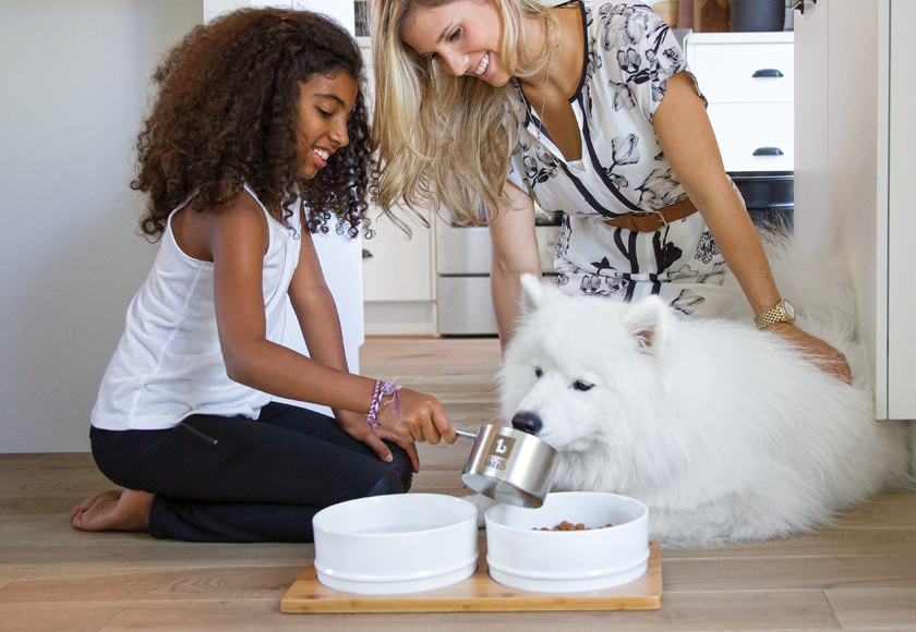 food-scoop-for-dogs-english