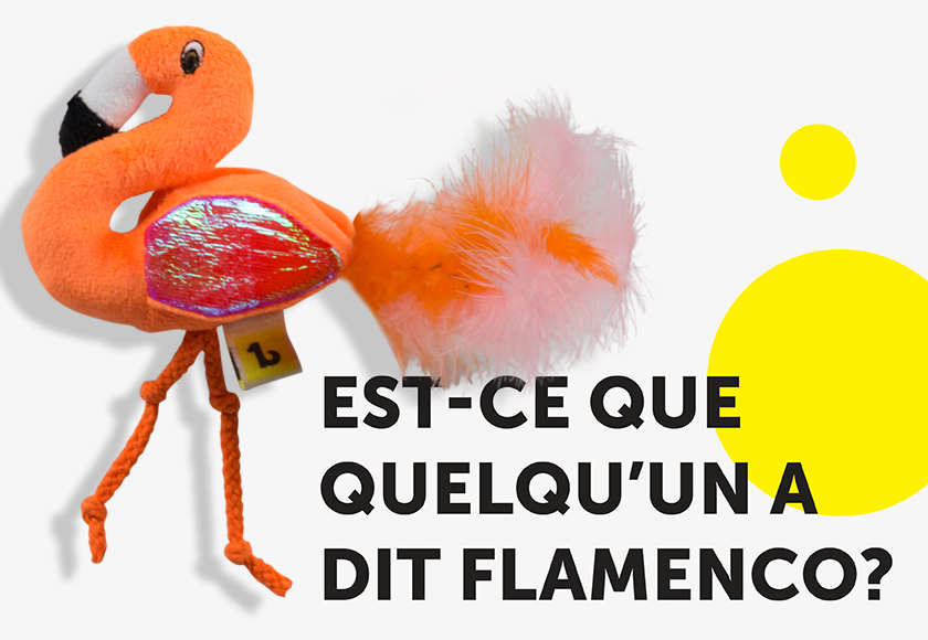 fun-dancing-flamingo-toy-for-cats-french
