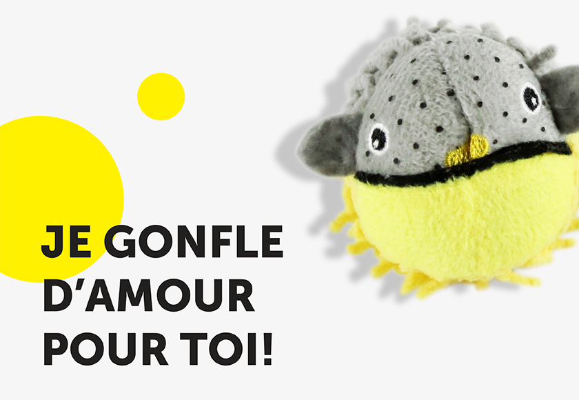 fun-fugu-fish-toy-for-cats-french