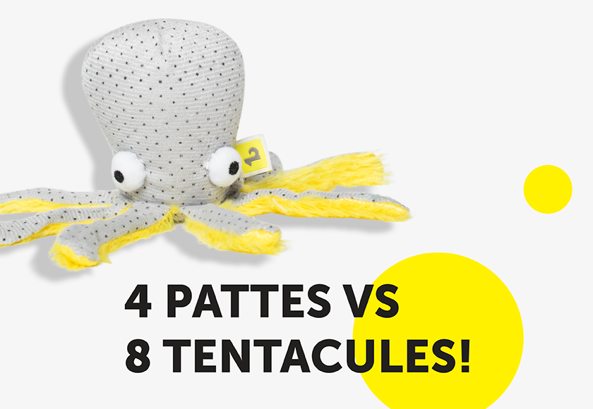 fun-octopus-toy-for-cats-french