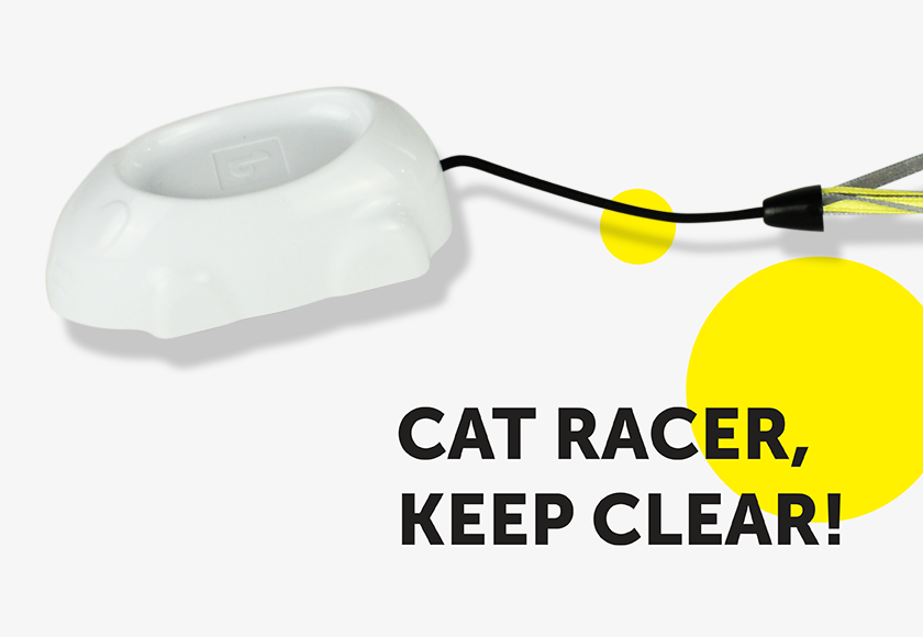 fun-radio-control-mouse-toy-for-cats-english