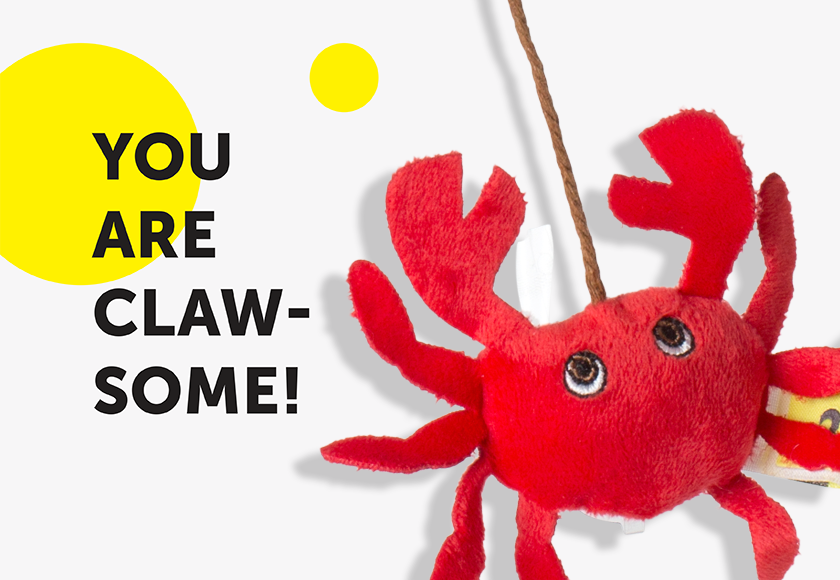 fun-teasing-crab-toy-for-cats-english