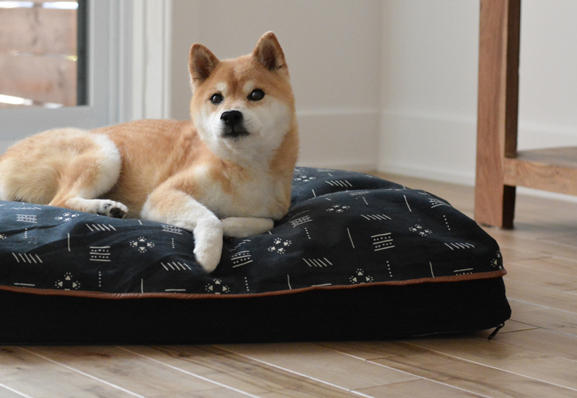 high-density-foam-puffy-bed-for-dogs-gray-english