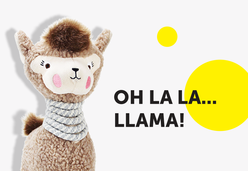 lola-the-llama-toy-for-dogs-english