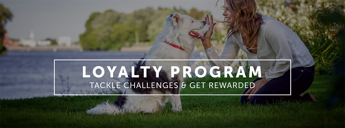 loyalty programme image