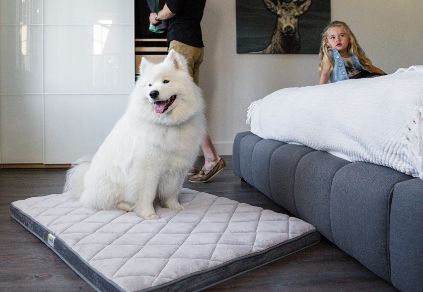 memory-foam-diamond-bed-for-dogs-gray-english
