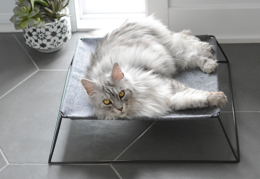 metal-hammock-for-cats-english