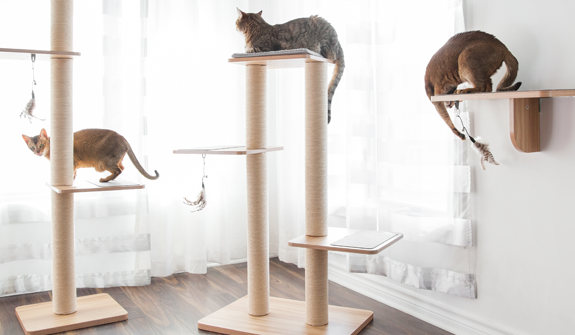 modern-cat-tree-for-cats-english