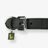 ropes-collars-classy-gray-for-dogs-english