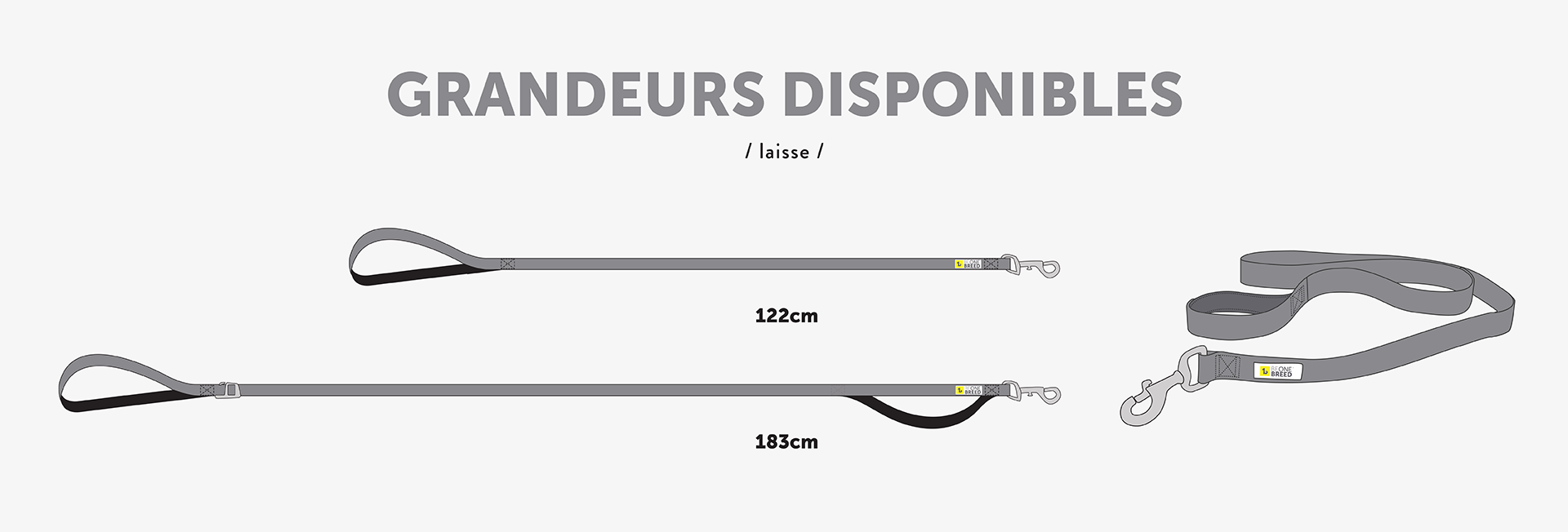 sizes-4'-leads-for-dogs-french