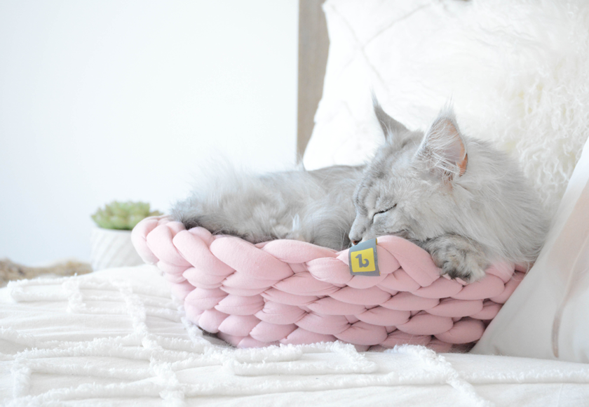 snug-knit-bed-for-cats-english
