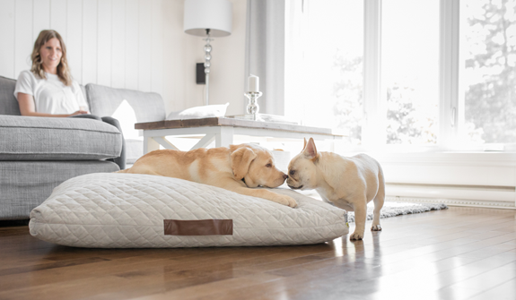 soft-quilted-bed-gray-for-dogs-english