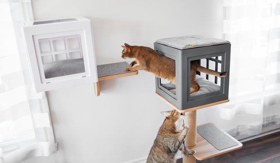 sturdy-shelf-katt3-evo-for-cats-english