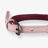 urban-collar-pink-for-dogs-english