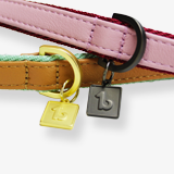 urban-collar-tag-for-dogs-english