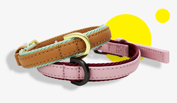 vegan-leather-urban-collars-for-dogs-english