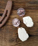 Buffalo Coin Slab Earrings
