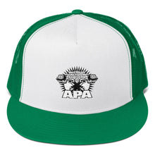 APA Embroidered Logo Cap