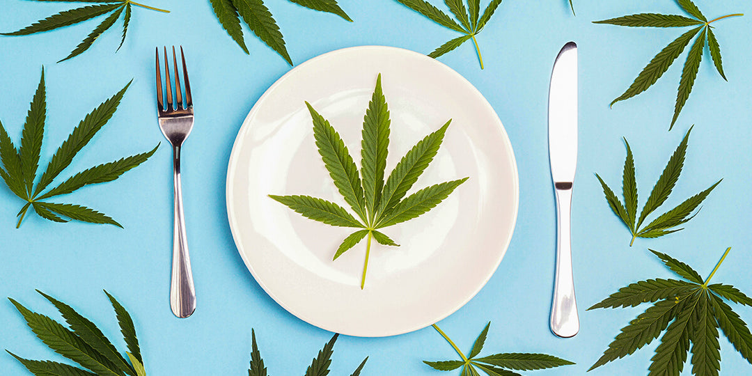 Best UK Restaurants Serving Up CBD - HempElf UK - Buy Online Top Cannabis and CBD Products